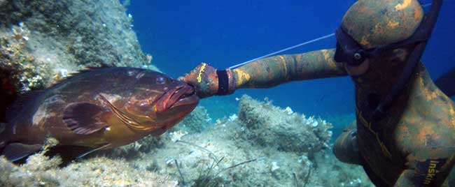 Spearfishing in Corfu